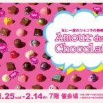 GBC チョコレート MILTOS ミルトス クラフトチョコレート アムールデュショコラ